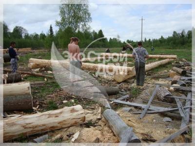 Начало строительства сруба из Костромы